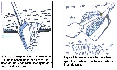 'An�lisis de suelo y agua'