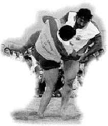 'Lucha Canaria'