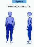 'Patologías de la columna vertebral'