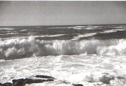 Dinámica marina