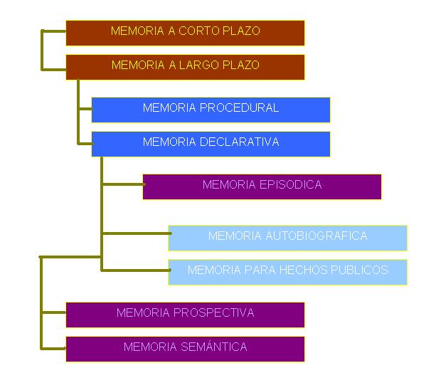 'La memoria'