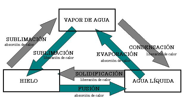 'Características hidrológicas y regímenes fluviales'