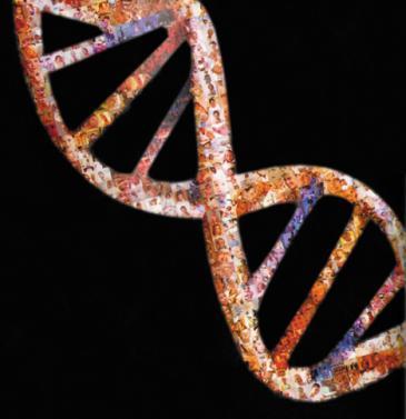'Proyecto Genoma Humano'