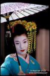 'Gastronom�a japonesa'