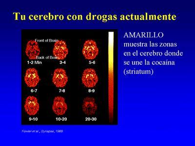 'Drogadicci�n'