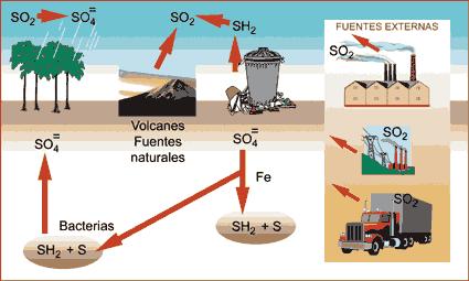 Agricultura y desastres ecológicos
