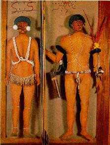 Els Yanomami