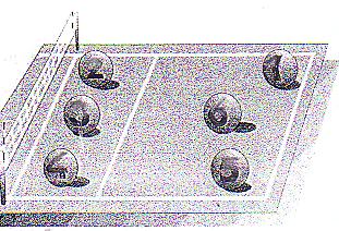 'Voleibol'