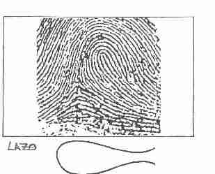 'Aportes de la dactiloscopia en la investigaci�n policial como medida preventiva'