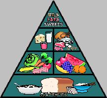 'Dieta alimenticia'