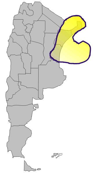 'Pueblos originarios del actual territorio argentino'