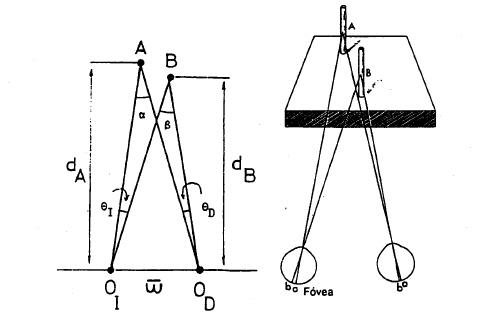 Queratometría. Simulación de hipermetropía y miopía. Reacción visual. Frecuencia crítica de fusión