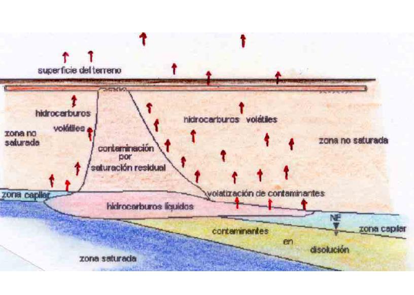 'Hidrocarburos'