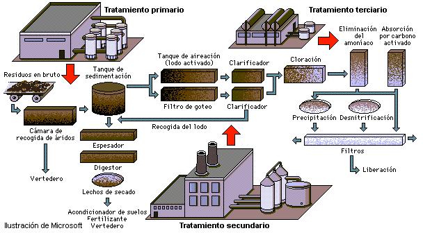 Contaminación: acústica, de aguas, de tráfico