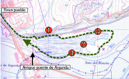 Ecosistema de Laguna de Campillo