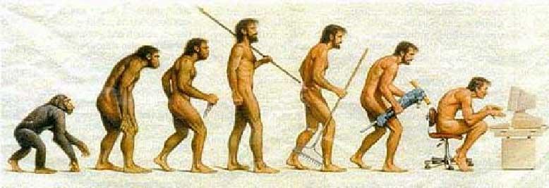 'Primeros Hominidos'