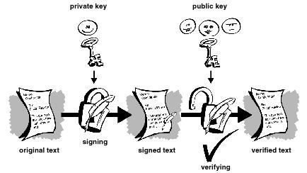 'Criptografía'