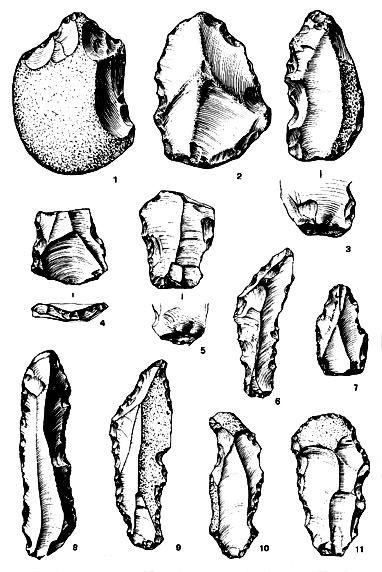 Encuentra aquí información de Utensilios prehistóricos para tu ...