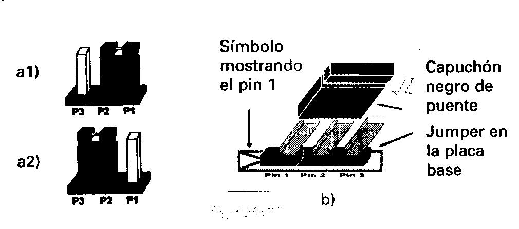 Placas base