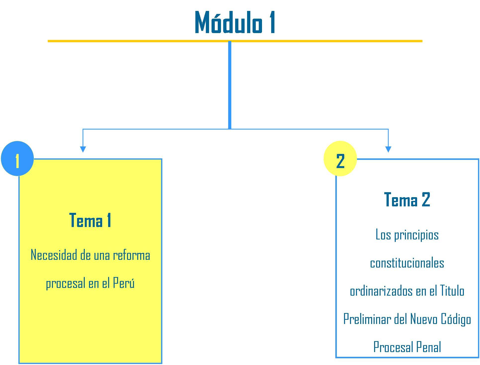 'Derecho Procesal Peruano'