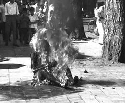 'Guerra de Vietnam (1959-1975)'