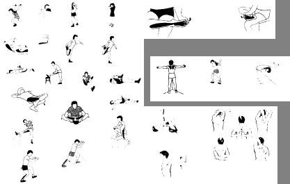 'Entrenamiento de la Flexibilidad'