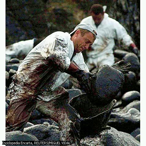 'Contaminación ambiental'