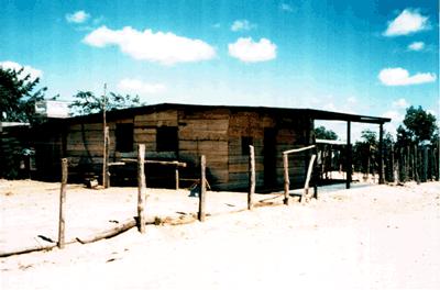 'La enfermedad de Chagas'