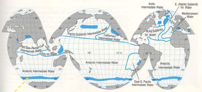 'Caracterizaci�n de las aguas de los oc�anos'