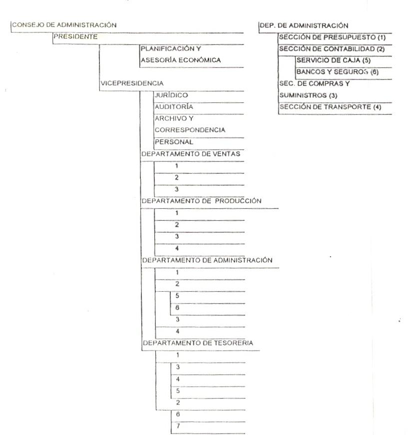 'Manual de organización'