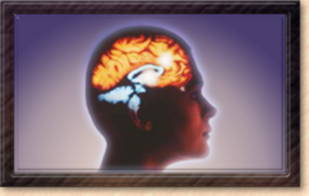 Daño cerebral