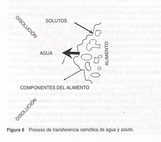 'Conservaci�n de Frutas y Vegetales con Azucar'