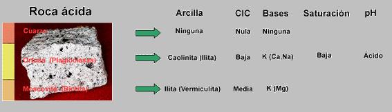 Ciclos bioquímicos del suelo