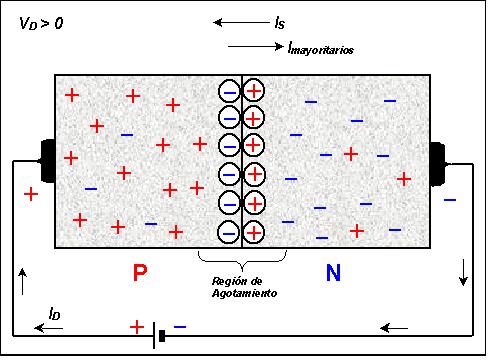 Transistores y conductores