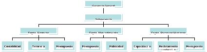 'Proceso administrativo'