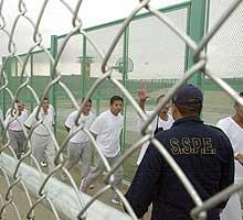 'Sistema penitenciario mexicano'