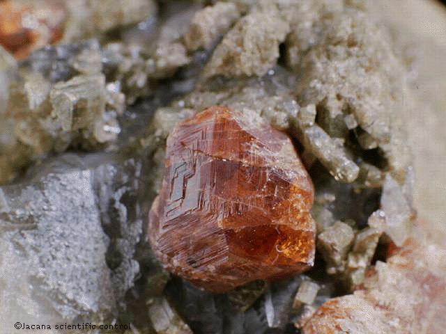 'Rocas y minerales'