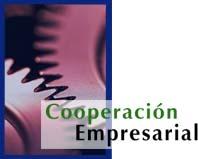 Joint venture (colaboración empresarial)