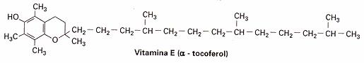'Vitaminas'