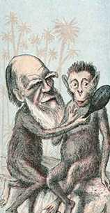 L'evolució dels éssers vius # Evolución de los seres vivos