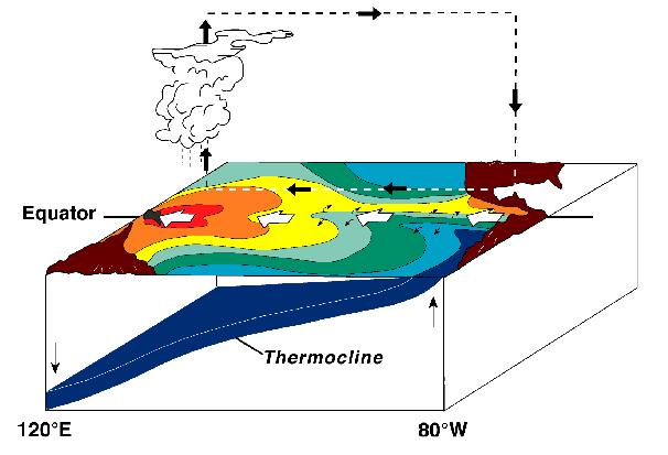 'Fenómenos meteorológicos'