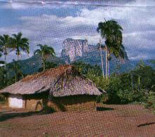 'Amazonas'
