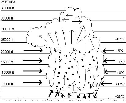 Meteorología básica