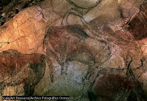 Hommo (Homo) Sapiens Neanderthalensis