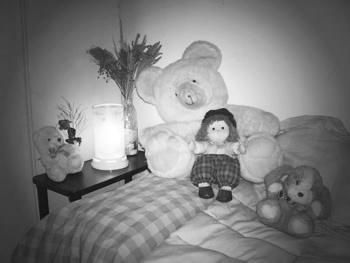 'Veladores nocturnos: Luci�rnagas'