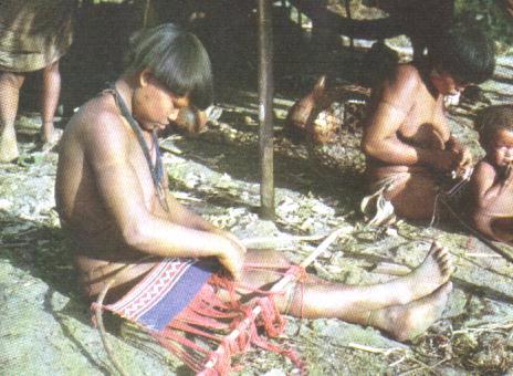 'Cultura indígena en Venezuela'