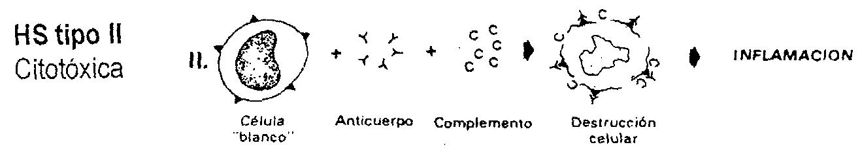 'Patología infecciosa y epizootiología'
