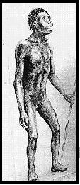 Orígenes del hombre