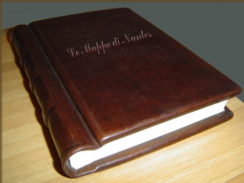 'La ley de la calle; Susan E. Hinton'