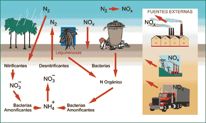 'Contaminaci�n en la agricultura'